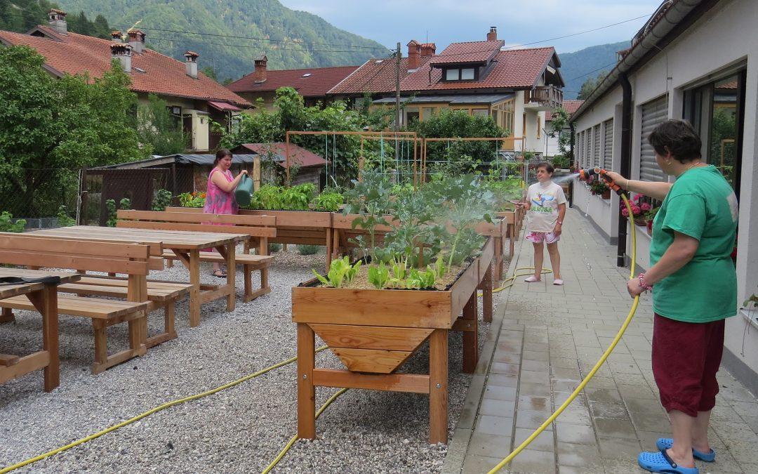 Vrtičkanje in hortikulturna terapija