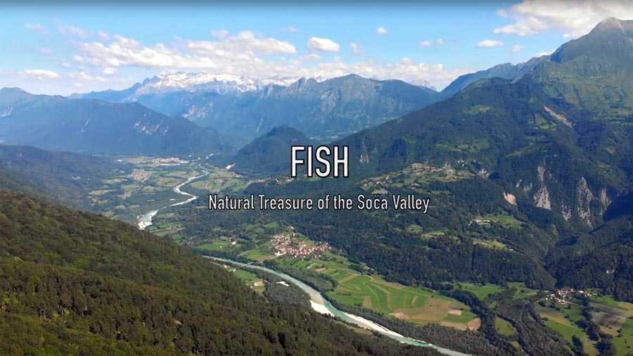 Promocijski film Ribe – naravni zaklad doline Soče